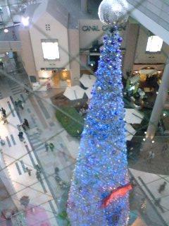 2010_12_23